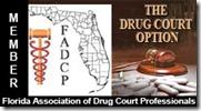 drug_court_professionals