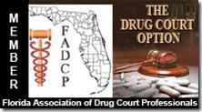 The drug court option